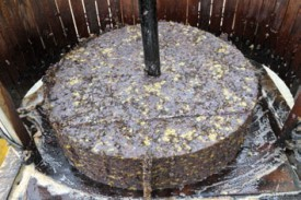 Le «gâteau» qui résulte du pressurage. © Michel Duperrex