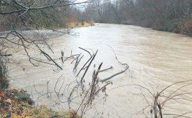 Le débit de la Menthue, à Yvonand, a considérablement grossi. ©Michel Duperrex