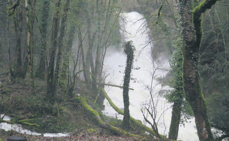 Le Fontanet de La Mothe doublait pratiquement le débit de l'Arnon en amont de Vugelles. ©Isidore Raposo