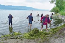 Employé et saisonniers ont uni leurs forces pour nettoyer les bords de plage. ©DR