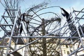 La «Tornade de bois» est, depuis lundi, en cours de réalisation sur la place Pestalozzi. © Michel Duperrex