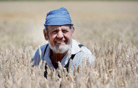 Marcel Saugy, 70 ans, prend la pose dans un champ d'orge, à Cuarny. ©Michel Duperrex