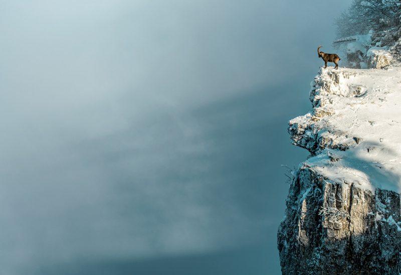La sauvegarde de la biodiversité au Creux du Van va de pair avec le maintien de son attractivité touristique, d'après les porteurs du projet. ©Swiss Image