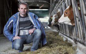 Patrick Gindroz a vendu ses vaches pour élever des génisses d'engraissement. ©Simon Gabioud