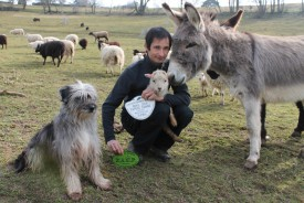 Gayak près du Centre sportif de Valeyres-sous-Montagny, dans son univers pastoral composé des moutons, des ânes Pagnol et Larzac, et de Steve Jaunin, qui tient, dans sa main gauche, la plaque attestant de l'exploit de son protégé. © Michel Duperrex