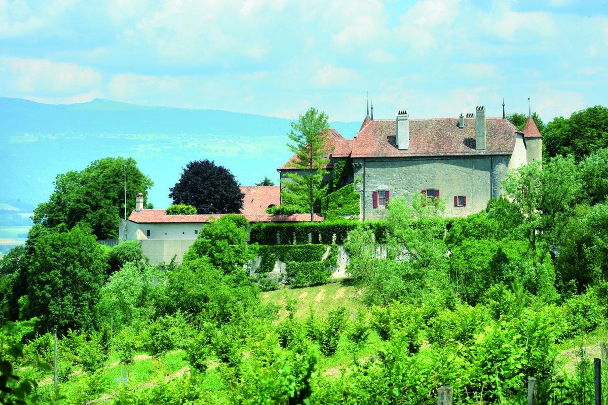 La vie de château pour 18 millions de francs