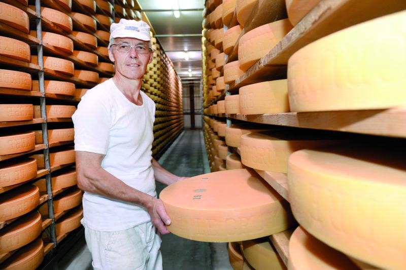 Le fromager de Penthéréaz, Gilbert Golay, fabrique 19 meules de Gruyère par jour. © Michel Duperrex