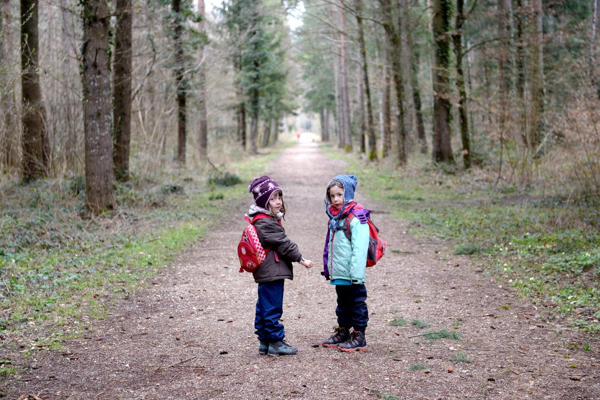 Quand la forêt se transforme en salle de classe