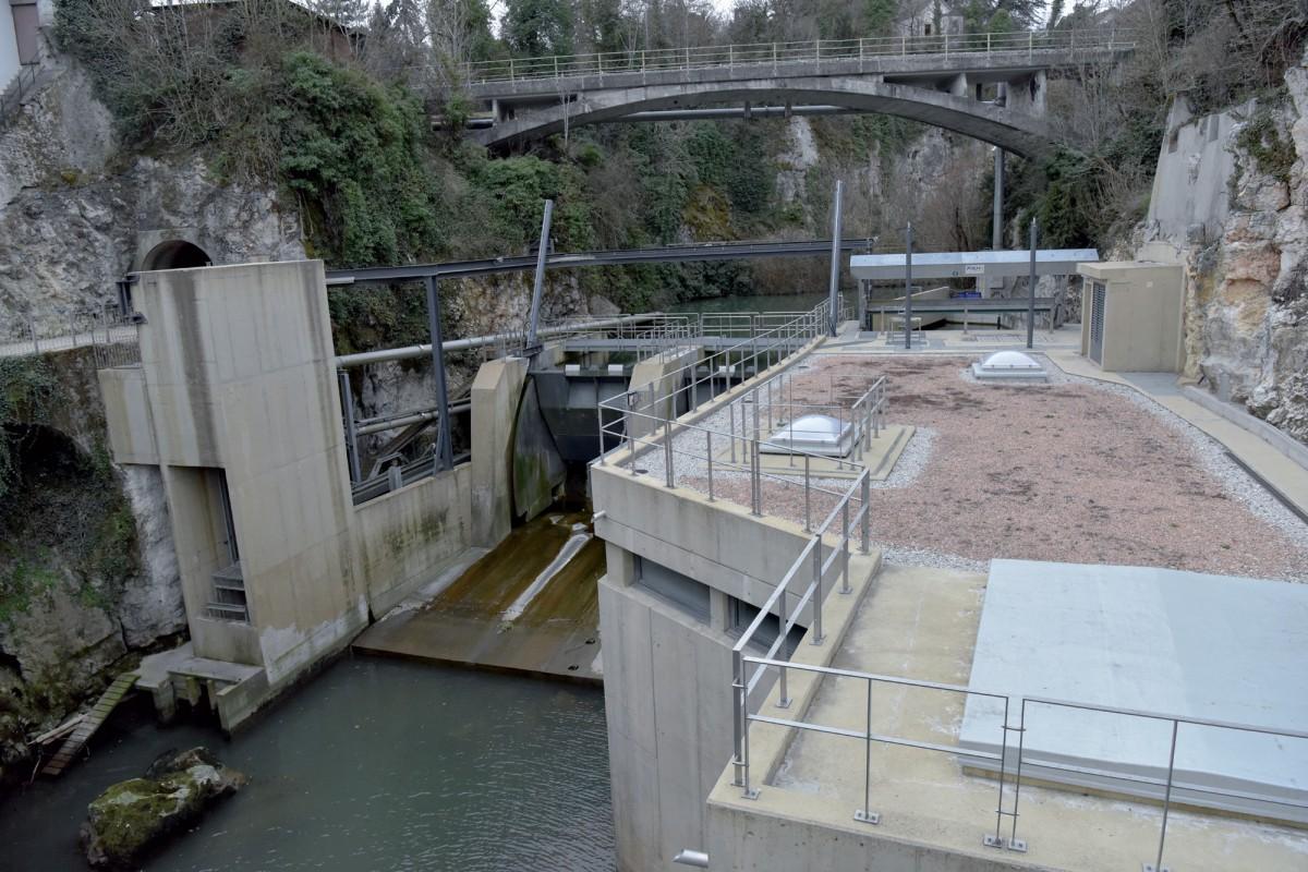 Des turbines fatales aux poissons