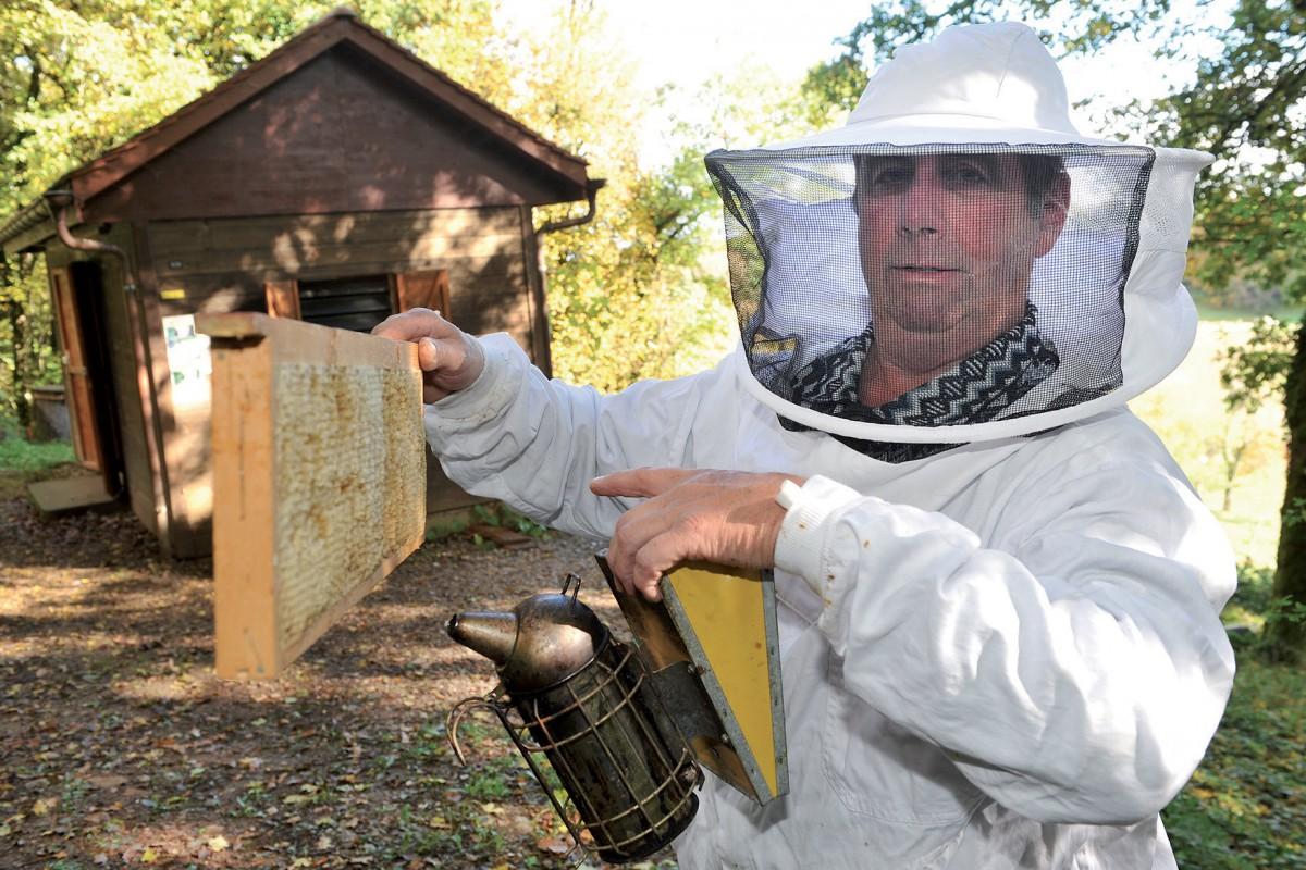 Une formation pour l'apiculture bio