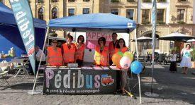 Les membres de l'association des parents d'élèves d'Yverdon-les-Bains, Yvonand et environs ont repris en main le Pédibus de la Cité thermale. ©DR