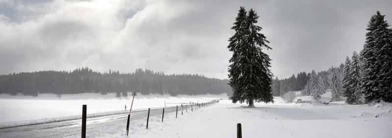 Entre Les Cluds et Mauborget, le paysage avait vraiment revêtu son costume hivernal, hier en toute fin de matinée. ©Michel Duperrex
