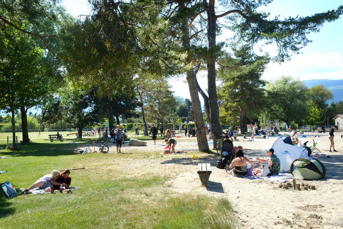 L'année 2020 égalise le record de l'année la plus chaude en Suisse