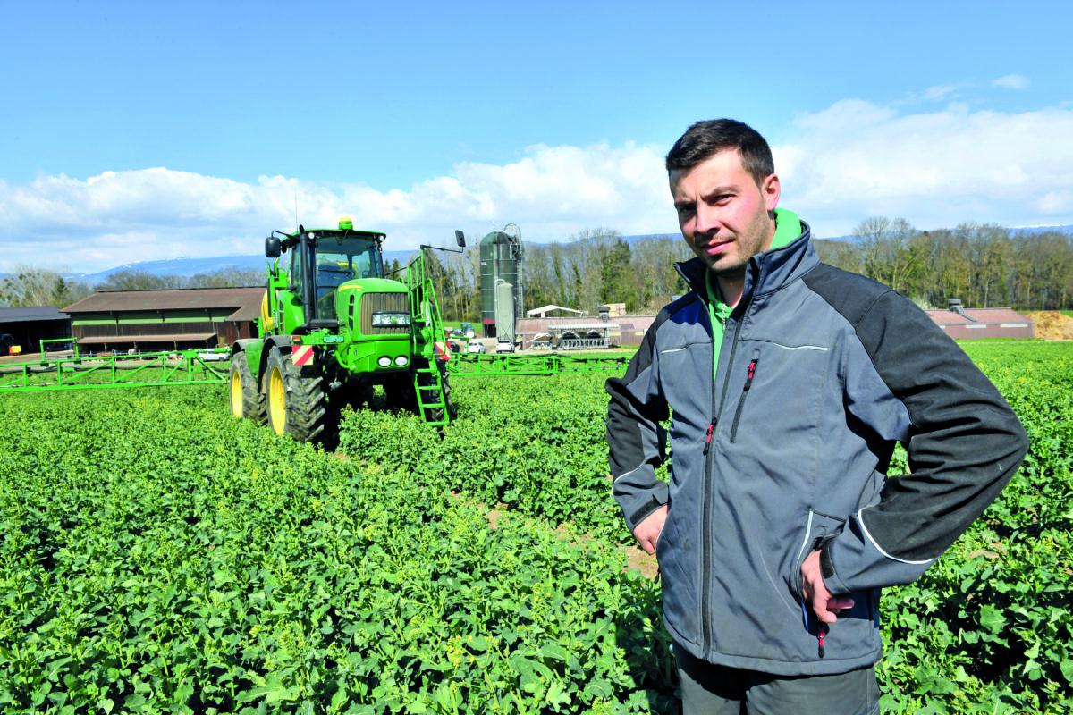 Cet agriculteur a diminué de moitié son utilisation de phytos