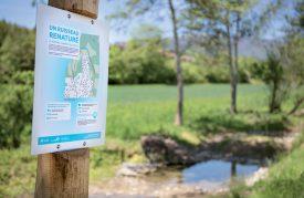 Des panneaux didactiques bordent le ruisseau des Vouattes. ©Simon Gabioud