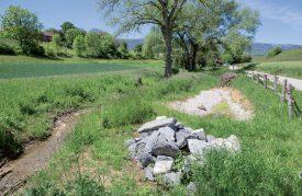 Le cours d'eau a été renaturé sur une longueur de 300 mètres. ©Simon Gabioud