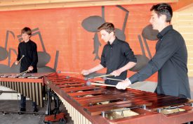 Récompensé par l'Ensemble symphonique de Neuchâtel, le Taf Trio a joué plusieurs morceaux sur ses xylophones. ©Michel Duvoisin