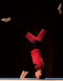 Les performances acrobatiques des gymnastes grandsonnois avaient de quoi donner le tournis. ©Gabriel Lado