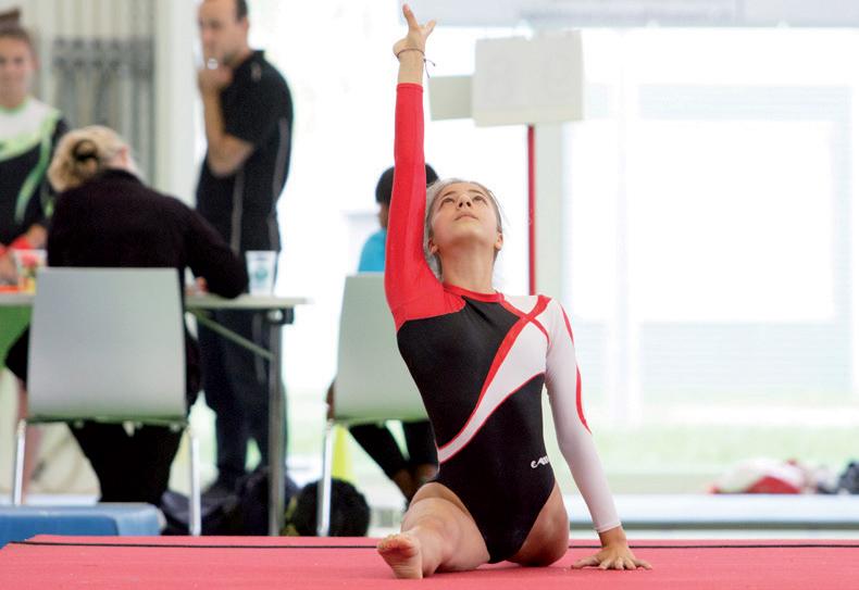 Les Amis-Gymnastes au four, au moulin et sur les podiums