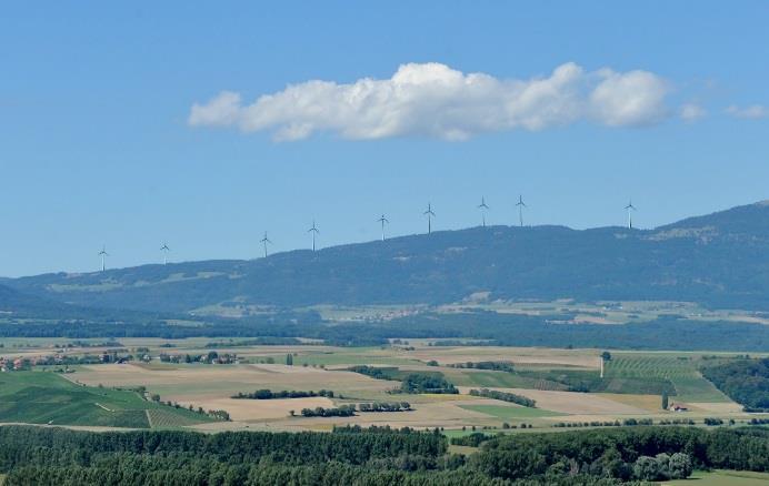 Le projet Bel Coster a le vent en poupe
