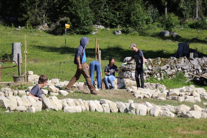 Une vingtaine d'écoliers a trié et taillé les pierres pour construire le mur.