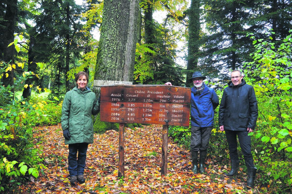 Baulmes ouvre les portes de ses forêts